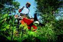 покос травы и кустарников,спил деревьев